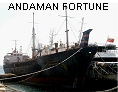 ANDAMAN FORTUNE IMO7024134