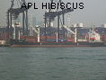 APL HIBISCUS IMO9000675