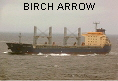 BIRCH ARROW IMO9336830