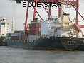 BLUE STAR IMO9132521