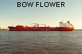 BOW FLOWER IMO9047491