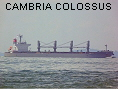 CAMBRIA COLOSSUS IMO9482110