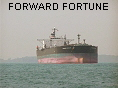 FORWARD FORTUNE IMO9317717