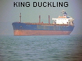 KING DUCKLING IMO7810284