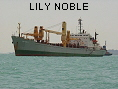 LILY NOBLE IMO7433282