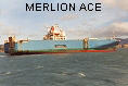 MERLION ACE IMO8303989