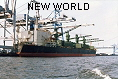 NEW WORLD IMO8307155
