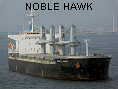NOBLE HAWK IMO9331933