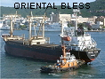 ORIENTAL BLESS IMO9174244
