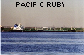 PACIFIC RUBY IMO9047427