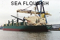 SEA FLOURISH IMO8308991