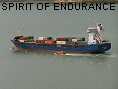 SPIRIT OF ENDURANCE IMO9387607