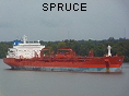 SPRUCE IMO8919037