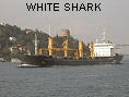 WHITE SHARK IMO9052733