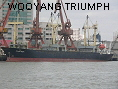 WOOYANG TRIUMPH IMO8914099